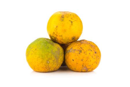 perishable: orange. rotten. dirty. three. isolated on white background.
