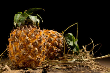 pineapple. straw. black background. Imagens