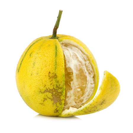 Bergamot oranges color yellow isolated on white background. Stock Photo