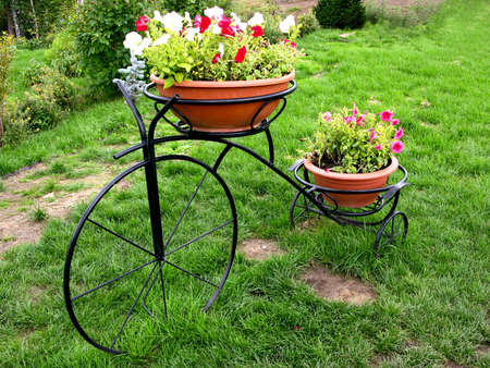 Bicycle in a garden photo