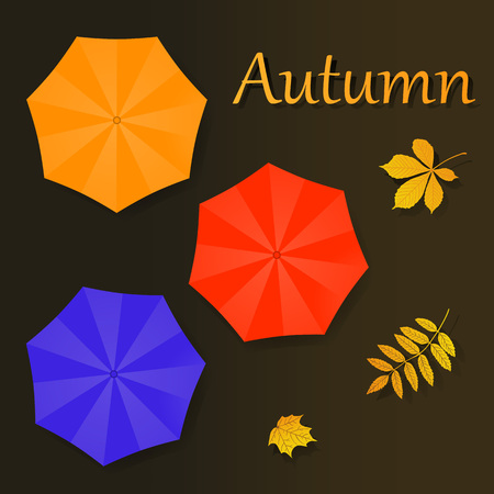twigs: Autumn vector illustration with umbrellas and leaves on brown background for calendar or flyer. Illustration