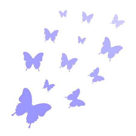 Butterflies isolated on white background. Butterflies trail. Butterfly background. Vector illustration