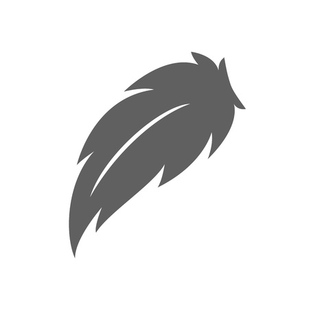 Feather - vector icon. Feather isolated on white background