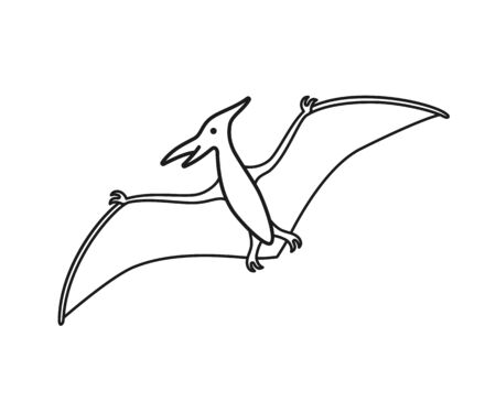 Pterodactyl vector contour silhouette. Pteranodon dinosaur. Pterosaur black contour isolated on white background