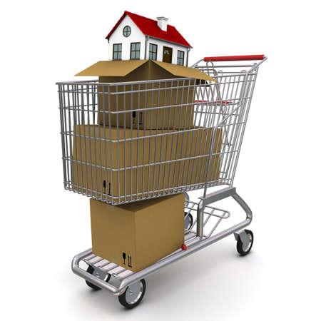 uitpakken: huis van een kartonnen doos die zich in trolley