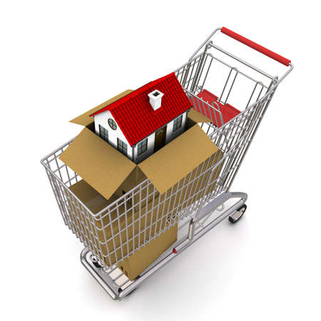 house in an open cardboard box, standing on trolley photo
