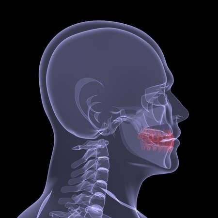 X-Ray picture of a person  Sore digestion  Isolated render on a black background Stock Photo - 19443556