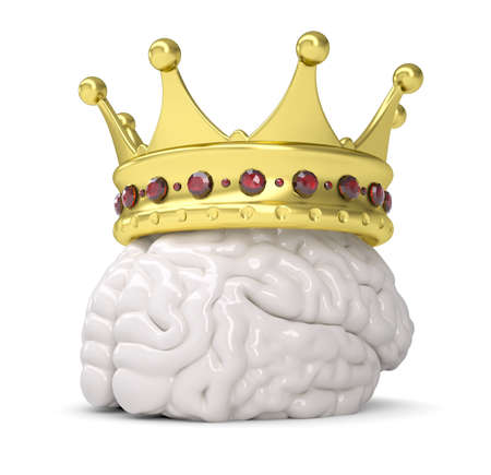 brains: Crown on the brain  Isolated render on a white background