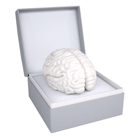 Brain in open gift box  3d render isolated on white background photo