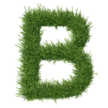 Letter of the alphabet made from grass  Isolated render on a white background photo