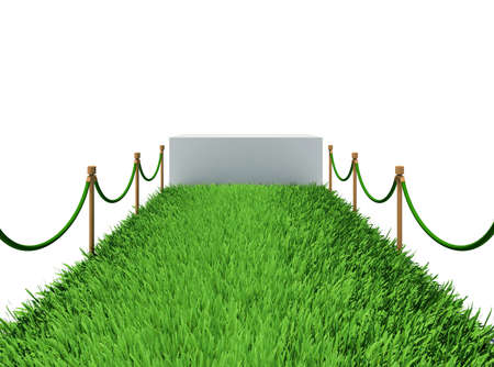 Path of green grass  3d rendering on white background photo