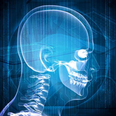 X-ray image of a man head Stockfoto