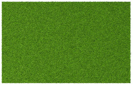 Top view angle of green grass meadow photo