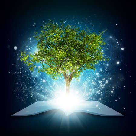 Met magische groene boom en de stralen van licht open boek
