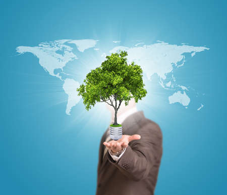 World map and man hold bulb with tree photo