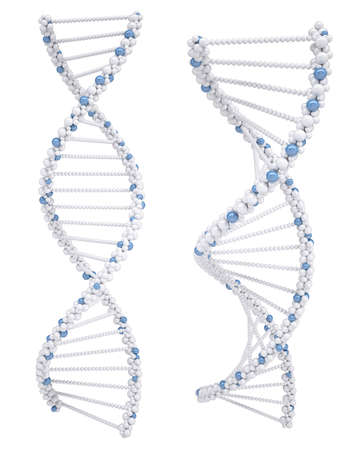 high scale: Illustration of white DNA chain