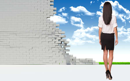 dilapidated wall: Beautiful businesswoman in shirt and skirt. Rear view. Dilapidated brick wall, green meadow and sky as backdrop. Business concept