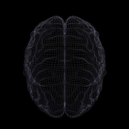medical scans: Wire-frame of human brain. Isolated on black background