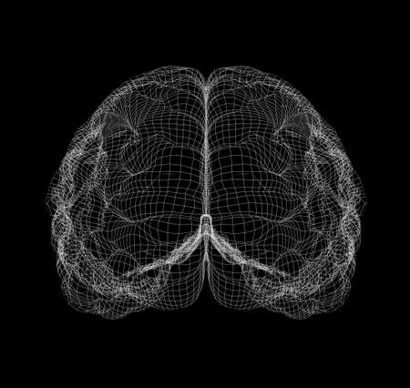 occipital: Wire-frame of human with occipital region of brain. Isolated on black background Stock Photo