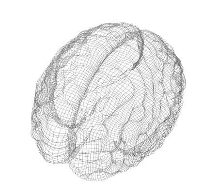 occipital: Wire-frame of human with occipital region of brain. Isolated on white background