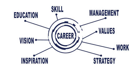 mangement: Abstract career concept. Work, study and career. White background