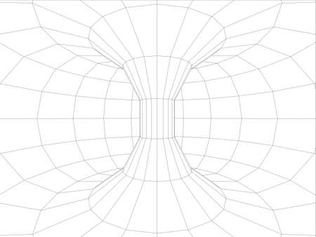 torus: Wire-frame wall inside torus. Vector illustration, 3d render