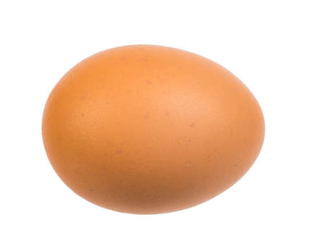 brown egg: Picture of brown egg on isolated white background