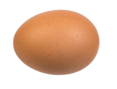 the egg: Picture of brown egg on isolated white background