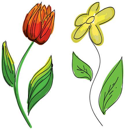 tulips isolated on white background: Drawn colored flowers on isolated white background. Vector illustration