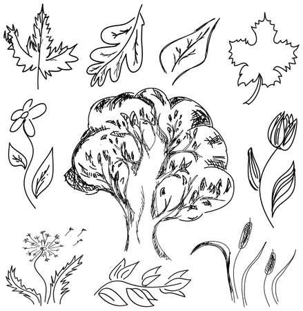 tulips isolated on white background: Drawn tree and flowers on isolated white background. Vector illustration Illustration