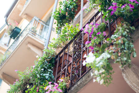 balcony window: Window sill with flowers on metal balcony railing Stock Photo