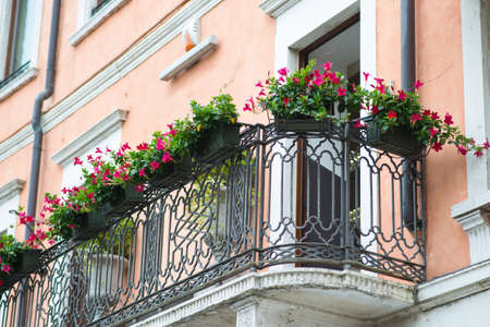 balcony window: Window sill with flowers on metal balcony railing, side view