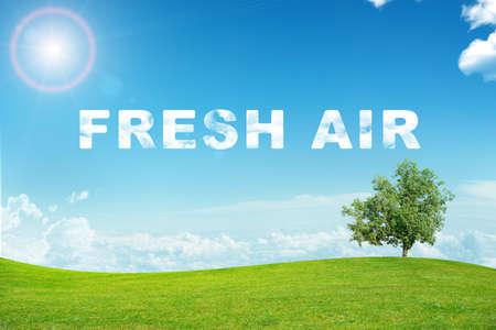 aire puro: Paisaje con la palabra de aire fresco y las nubes en el cielo