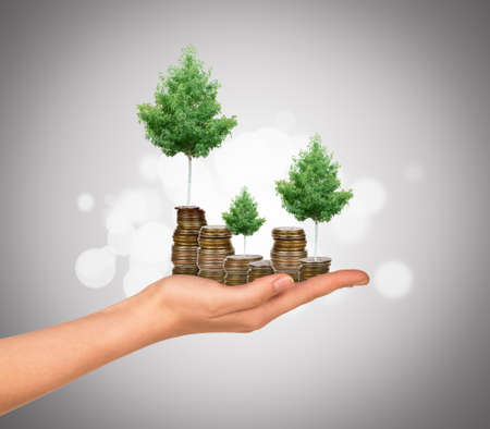 arm holding: Humans arm holding tree with coins on colorful background