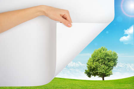 turning page: Hand turning page with nature background with tree
