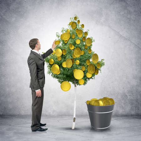 bucket of money: Businessman collecting coins from tree with bucket full of money, easy money concept Stock Photo