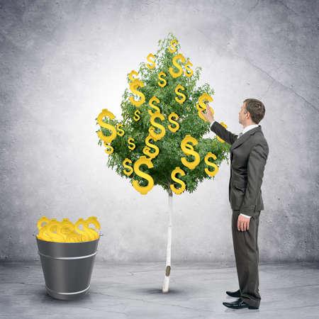 signos de pesos: El hombre de negocios la recogida de las muestras de dólar del árbol con el cubo lleno de dólares, el concepto de dinero fácil