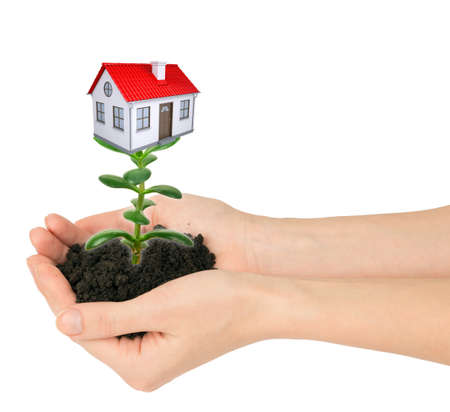 hands holding plant: Hands holding plant with house isolated on white background, property concept