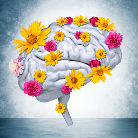 brain stem: Human brain with flowers on grey wall background. 3D rendering