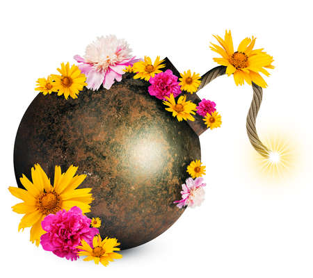 ignited: Money style bomb with ignited fuse and flowers isolated on white background. 3D illustration Stock Photo