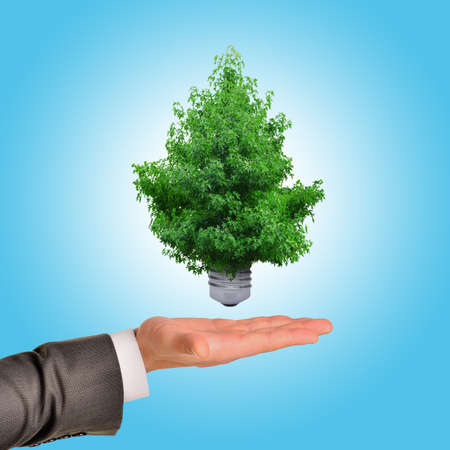 sustainable resources: Sustainable resources, renewable energy and environmental conservation concept