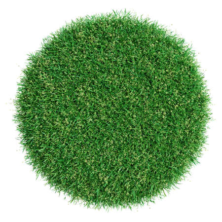 Grass pot top view. Isolated on white. 3D illustration