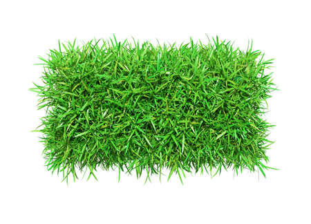 Green grass minus Stock Photo