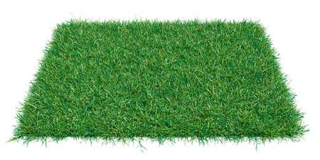 Mock-up rectangle piece of green grass
