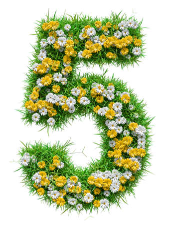 Number 5 of Green Grass And Flowers Stock Photo