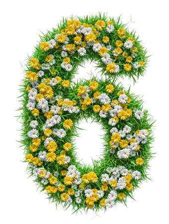 number 6: Number 6 of Green Grass And Flowers