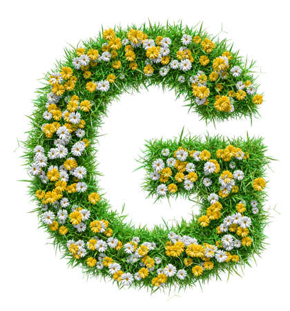 Letter G Of Green Grass And Flowers