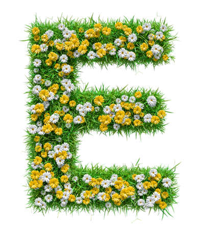 Letter E Of Green Grass And Flowers