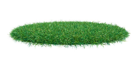 Green grass arena, isolated