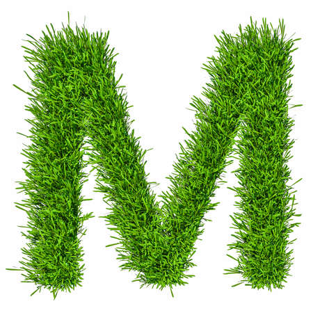 Letter of grass alphabet. 3d illustration